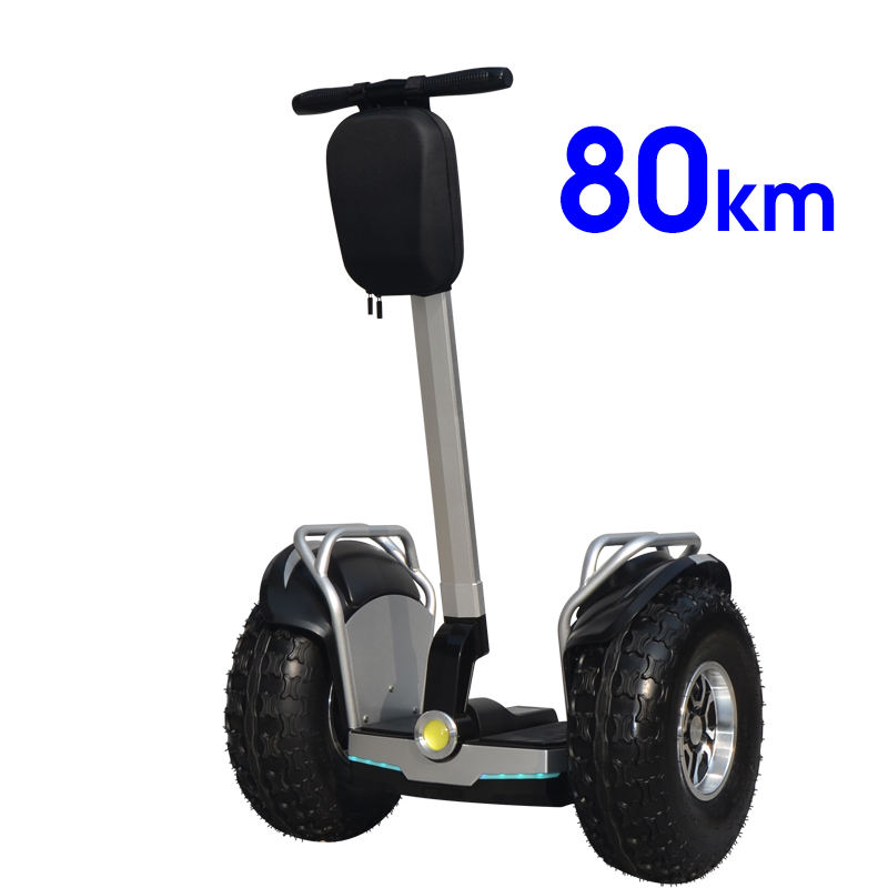 Two Wheels Self Balancing Scooter 2 Wheel Self Balance Hover board Electric Skateboard(Factory OEM/Dropshipping)