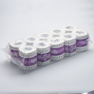 10 Rolls 2-ply TOILET TISSUE PAPER