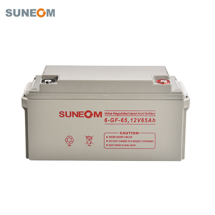 Free [ 12v Battery Storage ] SUNEOM 12V Batteries Gel AGM 65Ah Lead Acid Battery For Power Storage