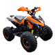 2020 new quad electric 1000w automatic mini electric ATV quad with reverse 1000w quad