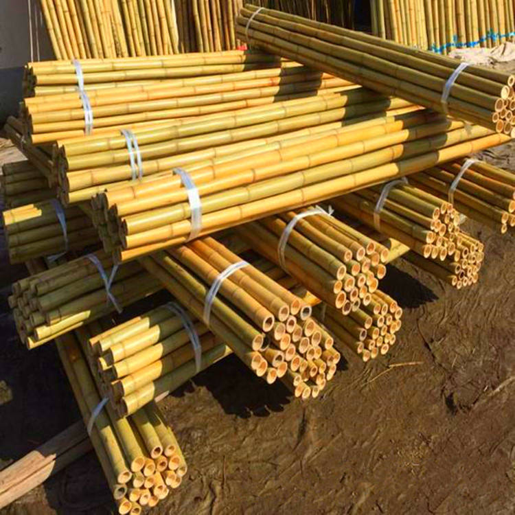Agriculture Bamboo Sticks Raw Bambou Poles for Nursery Planting/Custom Bamboo Timber Material