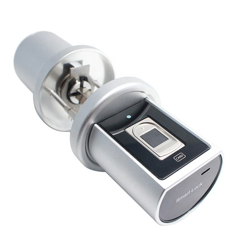 Hot Sales Smart Sensor Smart Card Door Lock Fingerprint App Lock