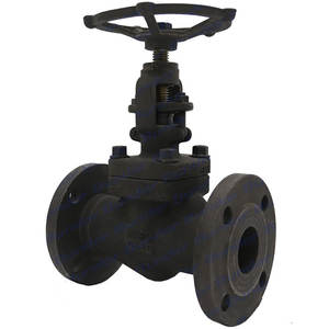 Bundor A105 Forged steel globe valve dn80 outside stem DN50 PN25 flange connection end globe valve