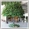 factory wholesale cheap indoor artificial fake plastic evergreen tropical fruit trees apple trees for sale