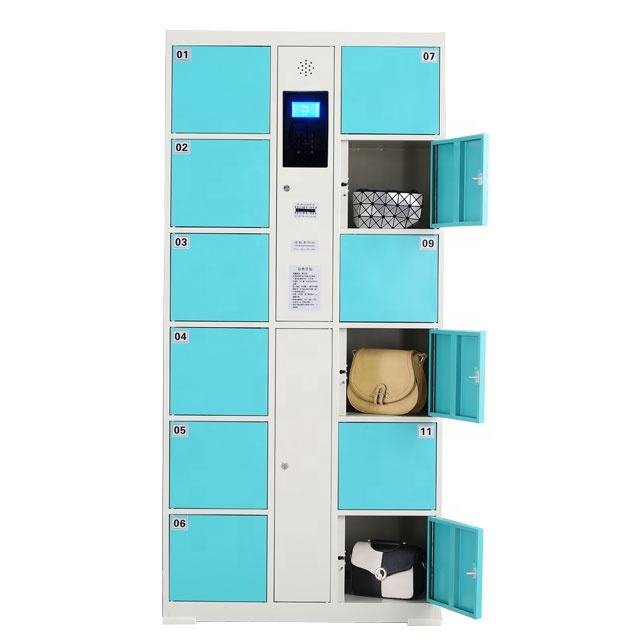 Electronic Gym Parcel Locker Metal Logistics Delivery Smart Lockers For Supermarket Bank Laundry Cabinet express locker