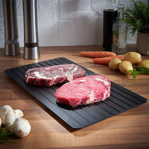 Black Gourmet Trends Quick and Easy Meat Defrosting Tray
