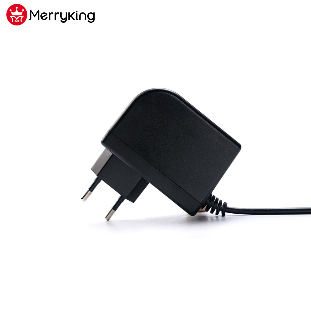 Custom label 2 v 3 v 6 v 5 v 3a dc voeding 12 v 24 v 36 v 300mA AC ADAPTER