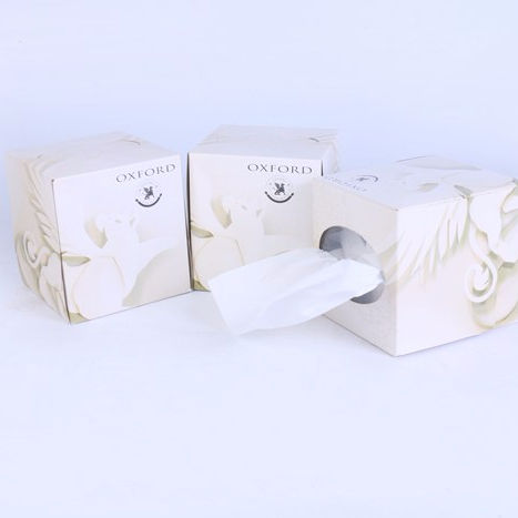 Custom White Color 2ply 100% Virgin Wood Pulp Box Facial Tissue