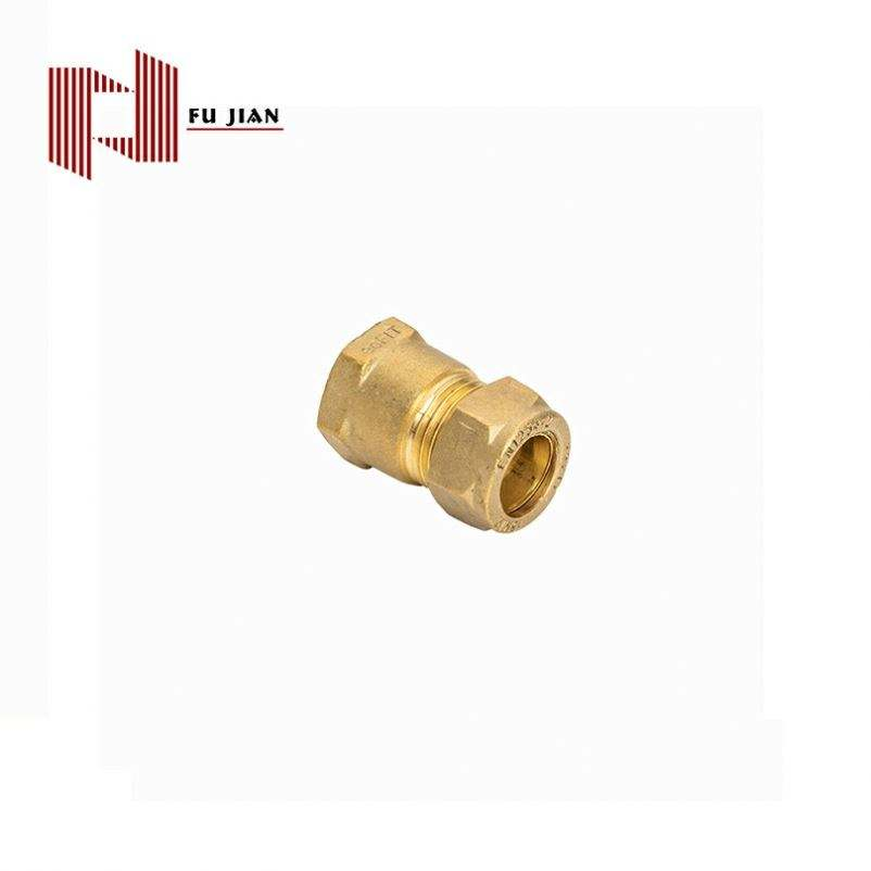 중국 공급자 Brass Compression Fitting Reducing 관 Connector 대 한 물 Heater Lctt