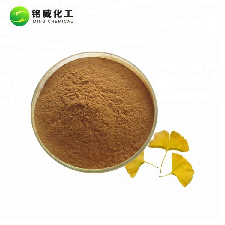 High Quality Ginkgo Biloba Extract Powder Supplement Bulk Price