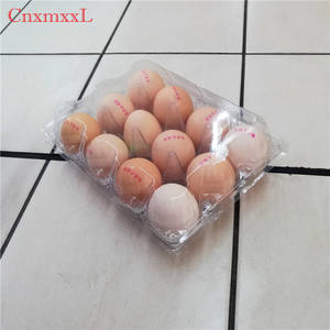 Wholesale plastic incubator quail egg tray for packing 6 units egg trays and plastic tray