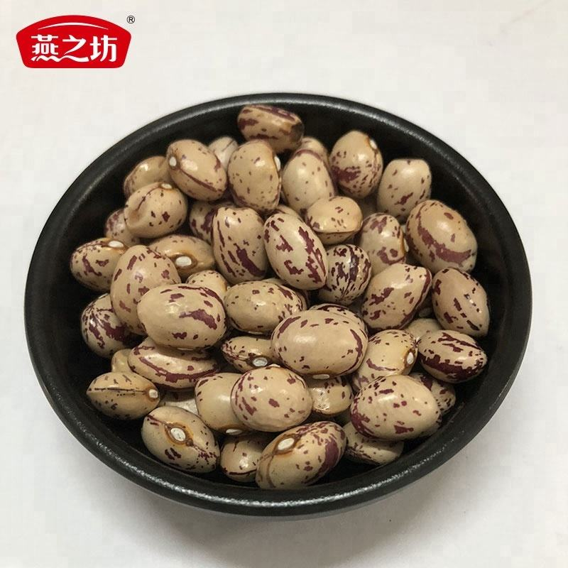 Xinjiang Round Shape Light Speckled Kidney Bean 165PCS/100Gram
