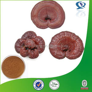 Shell-rotto ganoderma spore in polvere, reishi shell-rotto spore, reishi shell-rotto spore polvere