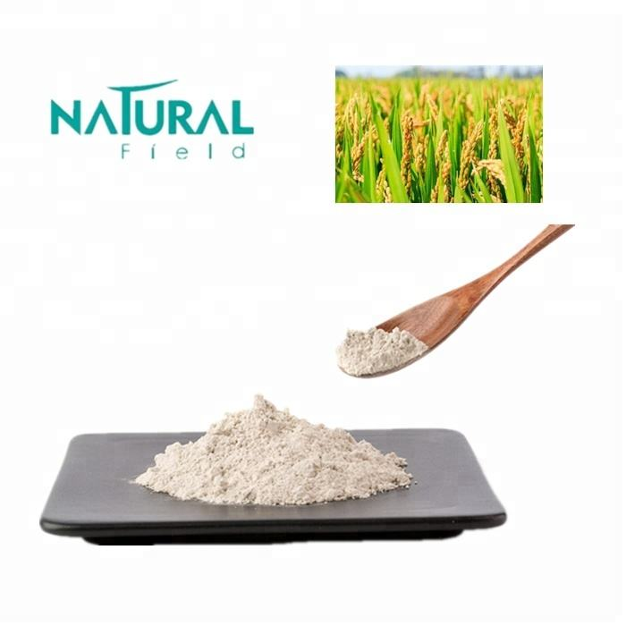 Supplement And Improve Immunity 80% Pure Rice Protein Powder