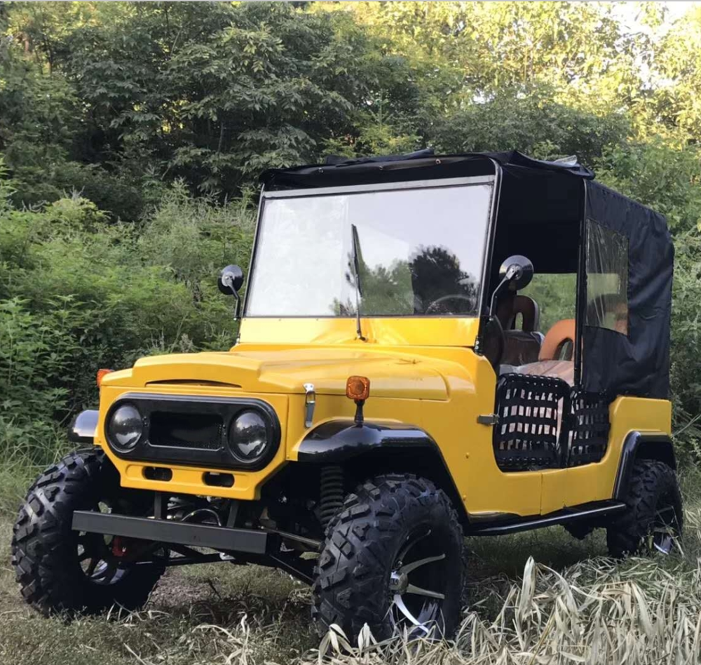 Ad alta densità di 300cc mini <span class=keywords><strong>auto</strong></span> <span class=keywords><strong>moke</strong></span> ATV/100cc mini ATV willys
