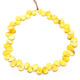 2018 fashion charm jewelry natural freshwater shell pieces yellow shell beads earrings necklace accessories wholesale