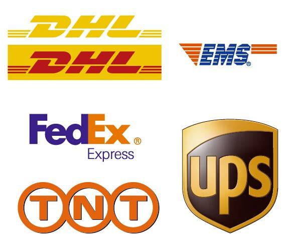 Professional Express from China to Greenland, TNT/DHL/Federal, Fast Direct