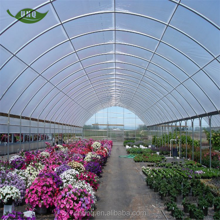 UNQ Single-span flowers cultivation and nursery greenhouse