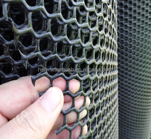 Poultry Net / Plastic Netting with High Quality