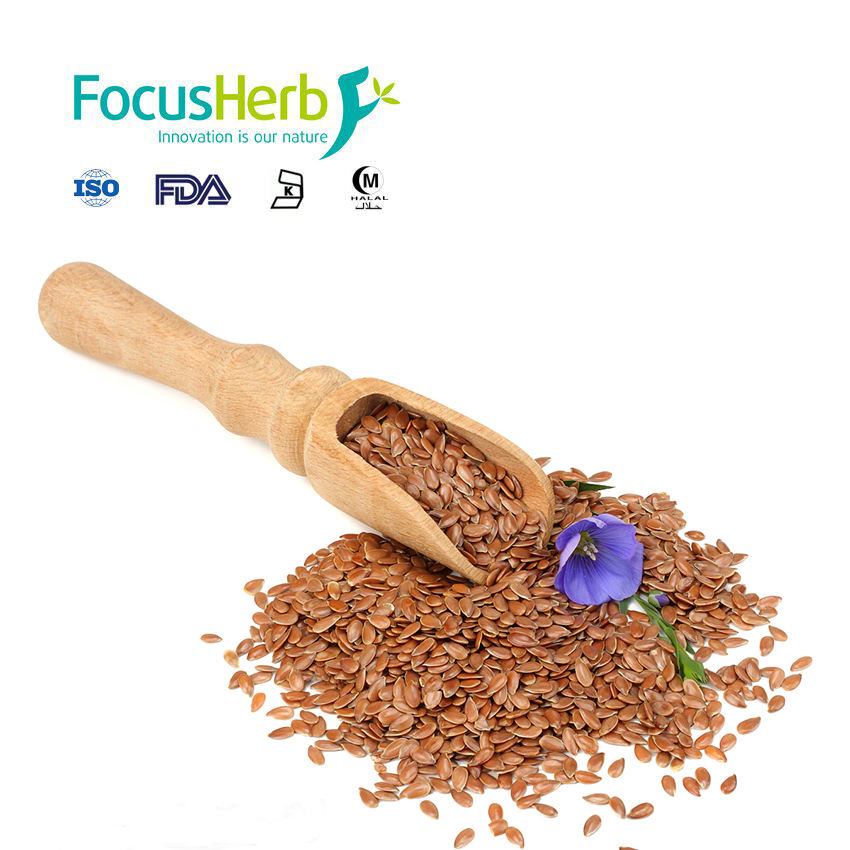 Health Flax Seeds oil Flax Seeds price Flax Seeds