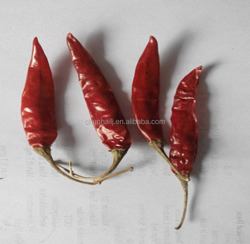 Wholesale Red Dry India Chili Teja S17 without stem or with stem