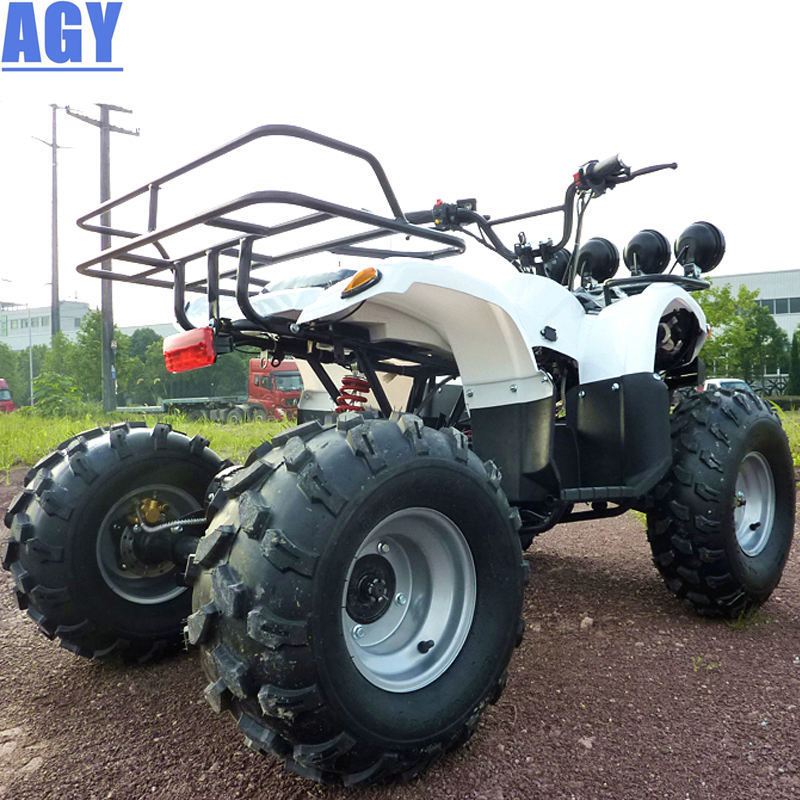AGY adult quad bike electric go kart