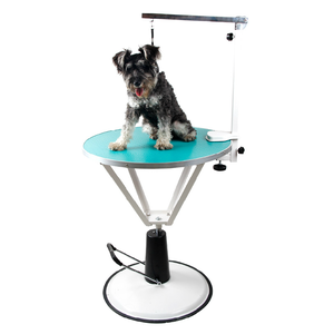 Non-Slip Rotatable Pet small grooming table dog Dressing table