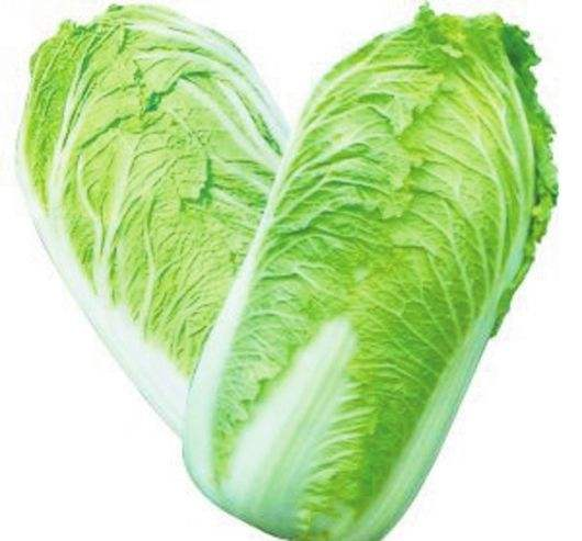Heat resistant green cabbage seeds f1 hybrid SXD No.4