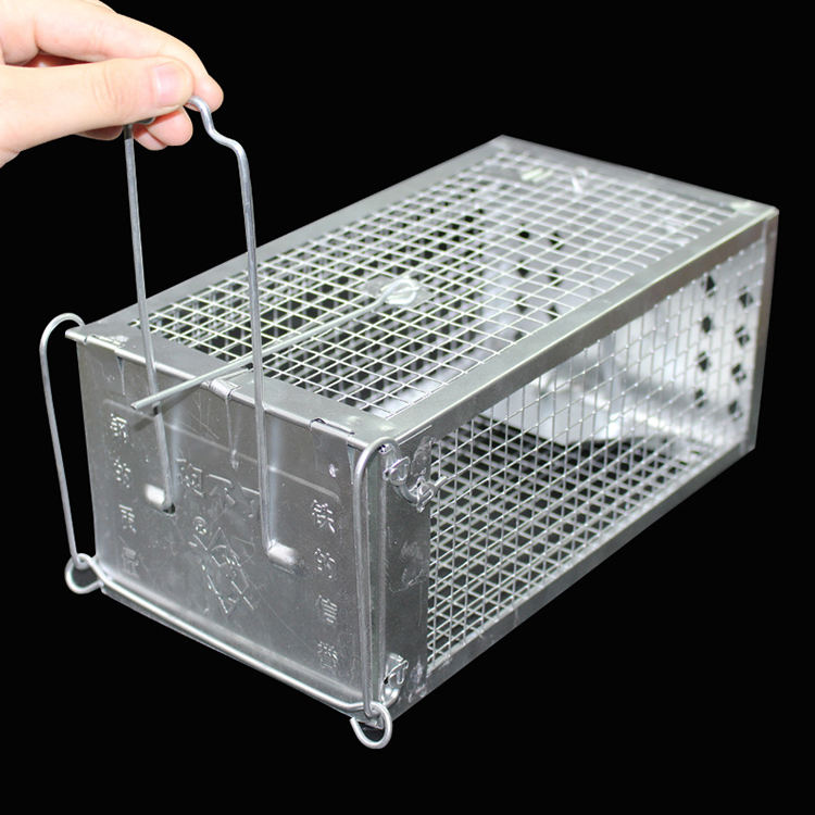 galvanized or PVC coated Humane live multi catch mouse rat animal trap cage
