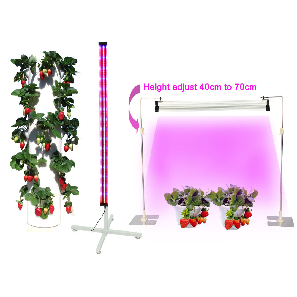 Aardbei Aeroponic Container Thuis Verticale Kas Indoor Plant Aquaponics Hydrocultuur Systemen