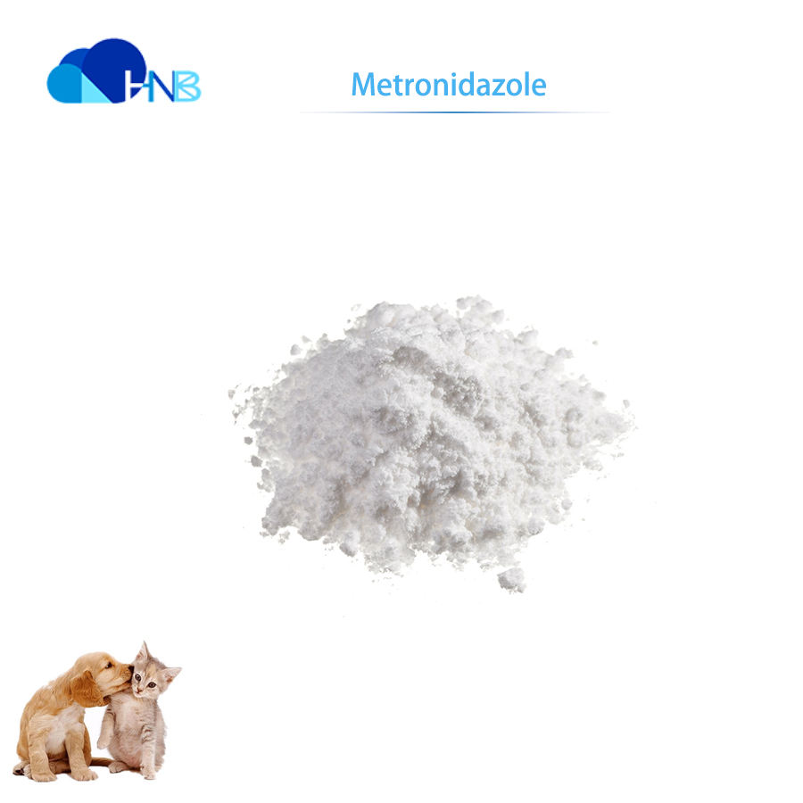 GMP Factory Supply metronidazole veterinary medicines for cattle CAS 443-48-1 metronidazole injection/ metronidazole benzoate