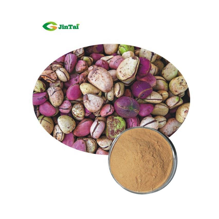 High quality 10:1 20:1 bitter kola nut extract
