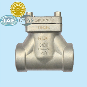 DN10,50 ISO feilun brand SS304 DN50 flange Cryogenic Check valve for liquid gas