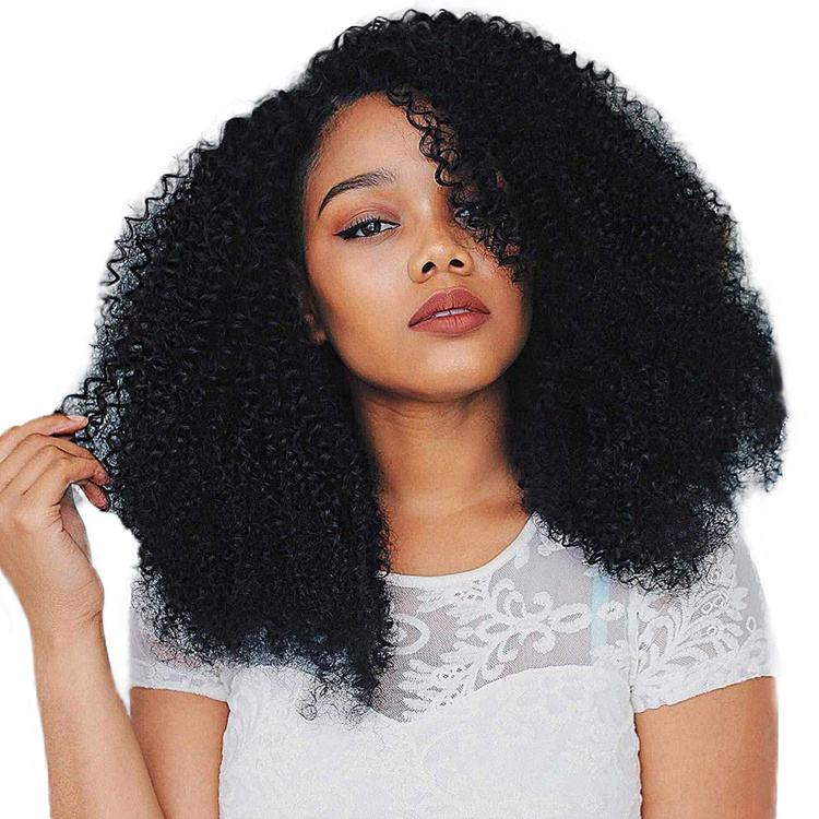 Black Afro Kinky Curly Synthetic Long Wig for Black Women