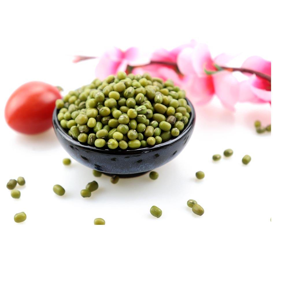 Green mung bean Sprouting grade 2.8-4.2mm Vigna beans with best price
