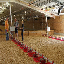 Sanhe cheap commercial poultry farm sheds house in Egypt