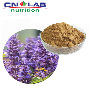 Sage Leaf Extract Powder, Sage Leaf P.E., Sage Leaf Extract (4:1 5:1 10:1 20:1)