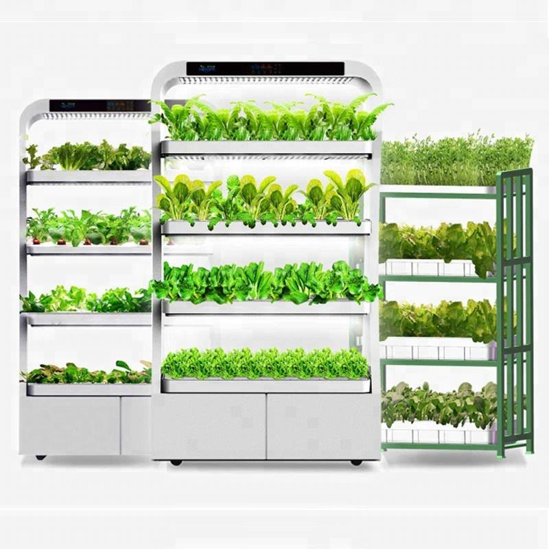 Shezhen full spectrum 250W 3 tier rack Led Grow Light hydroponic for indoor eco-kitchen