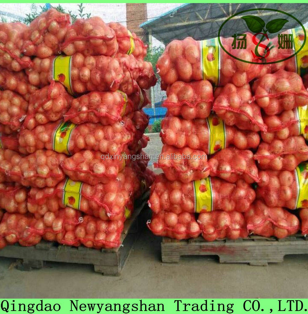 Bulk Export Health Vegetable Big Yellow Onion In A Best Price