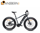 2018 China The Cheapest Lower Price Speed Electric Fat Wheel Bike