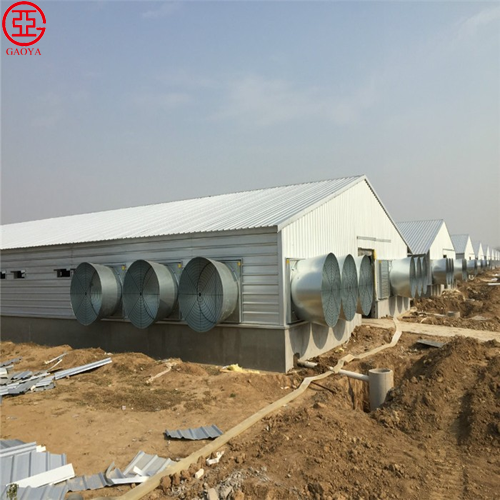 Economical light steel structure layer quail cage pre-engineered chicken pakistan poultry farm shed