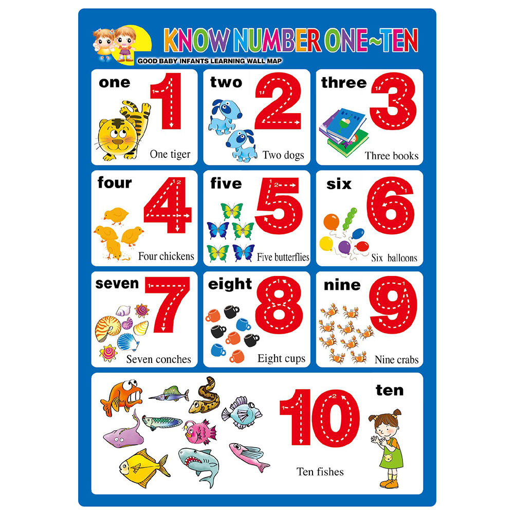 Single side print double laminate kids education paper poster