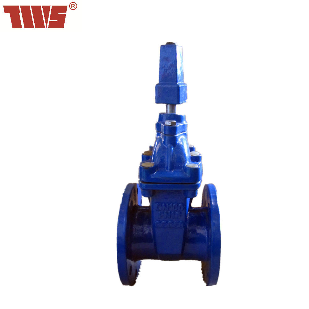 DN65-DN300 ductile iron resilient seated Gate Valve for sewage and oil made in China of Tianjin
