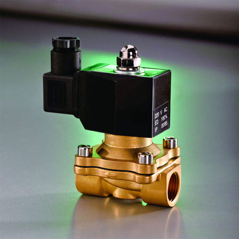 12V AC220V Normal Closed Valves 2W160-15 Direct-acting solenoid valve
