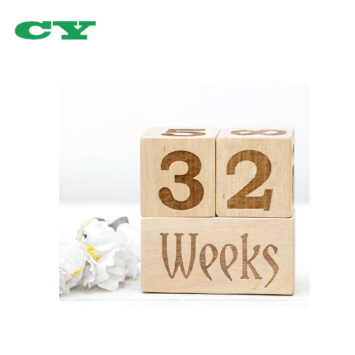 Children's Milestones Wooden Baby Age Blocks