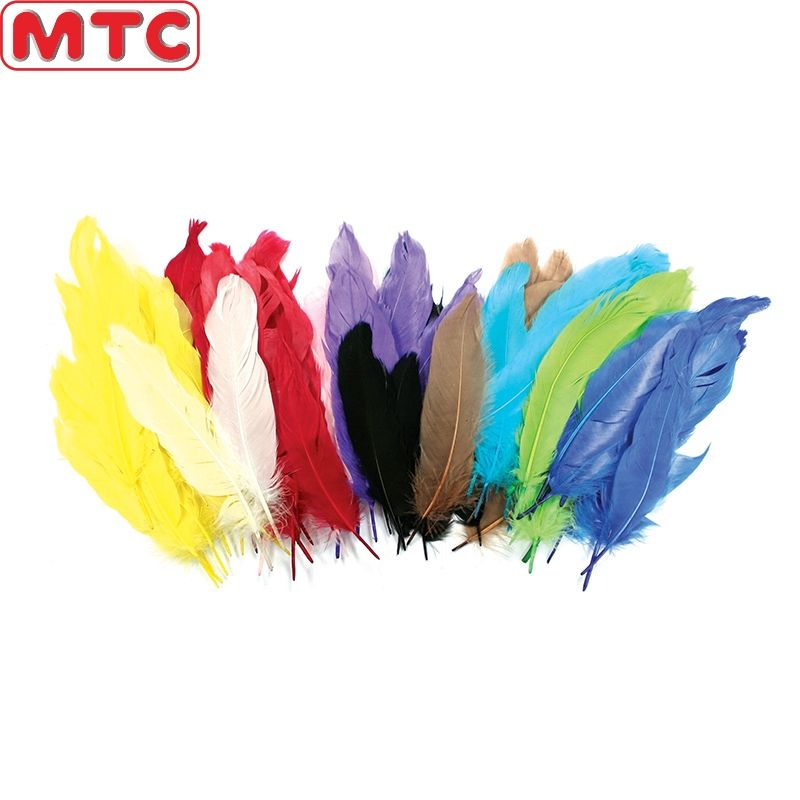 Wholesale Hot Sales Decorative Craft Feathers Turkey/Peacock/Goose/Pheasant Feathers Quills