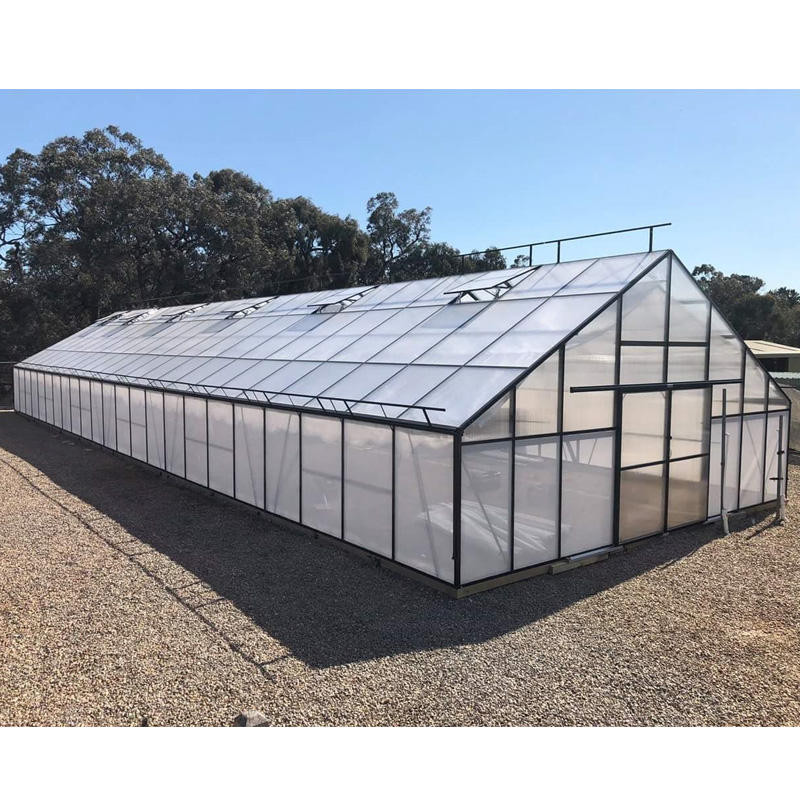 G-MORE Strong Polycarbonate Sheet Green Houses Agriculture Greenhouse - 7M Width,12M Length