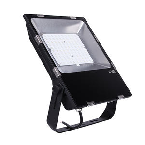 100w Ip66 220v Wide Angle Outdoor Focus Reflector Flood Light Led Floodlight With Ies File