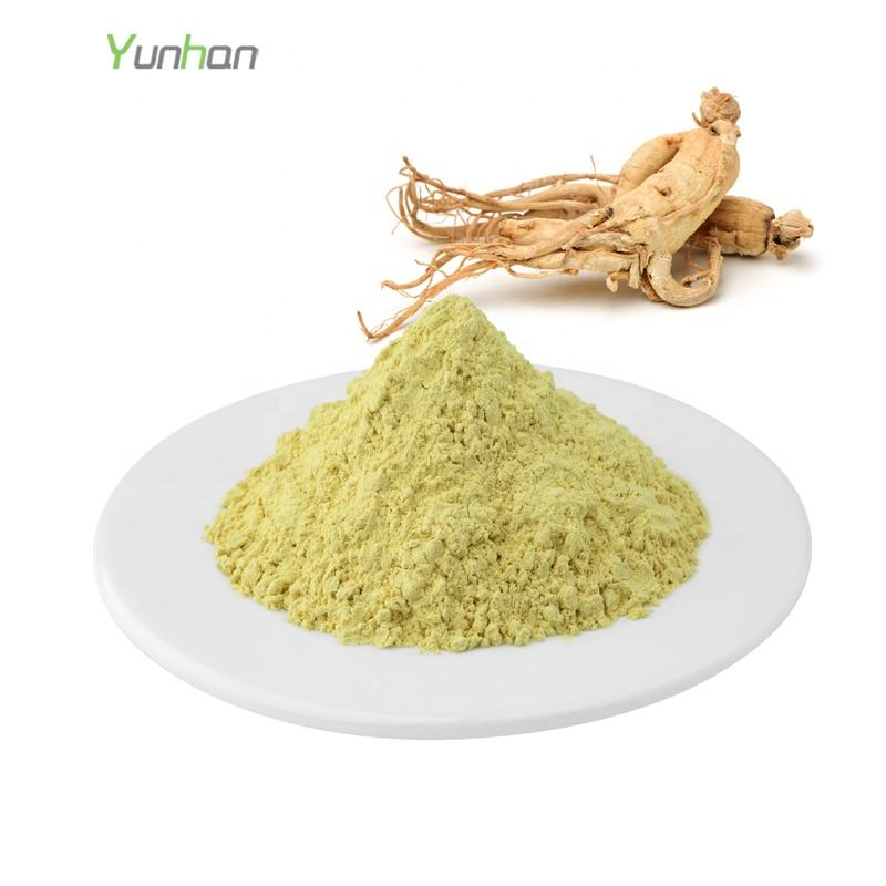 Pure Natural Ginseng Extract Powder Health Care Ginsenoside 20% Powder In Bulk