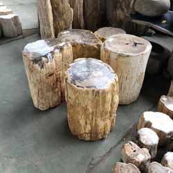 decorative natural fossil stone antique wood for sale